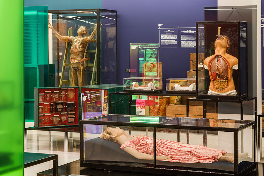 Anatomical Waxwork Cabinet with Young Girl Struck by Lightning, Sword Swallower, and Transparent Man