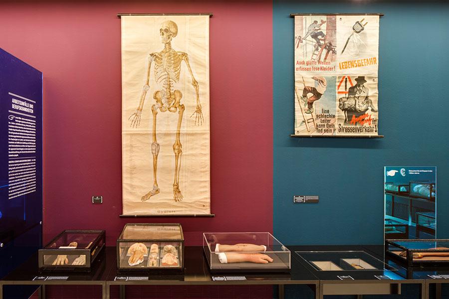 Anatomisches Wachsfigurenkabinett