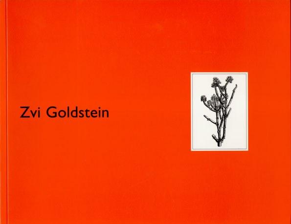 Zvi Goldstein